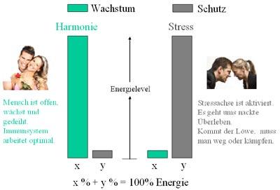 Diagramm Energieumverteilung bei Wachstum und Schutz